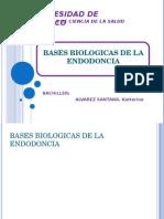 BASES BIOLOGICAS.ppt