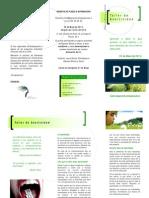 triptico asertividad(1).pdf
