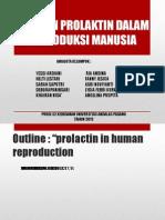 Hormon Prolaktin Dalam Reproduksi Manusia