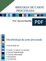 microbiologiadecarneprocessada-090616155048-phpapp01
