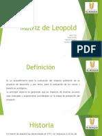 Matriz de Leopold