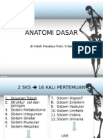 Anatomi I