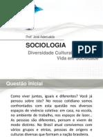Aula sobre Formação Social do Brasil