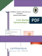 Proyecto-Hymelopis-diminuta.docx