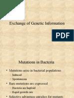 Gene Exchange
