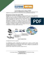 pap2-mitelvirtual.pdf