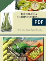 TECNO AGRO 1.pptx