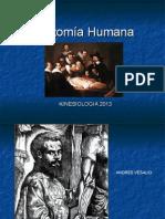 Generalidades Anatomia Humana 1 2013