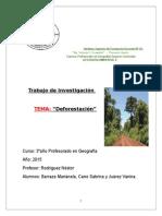 Trabajo Deforestacion Ambiental.terminado