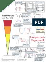 IR Illustrated Espanol