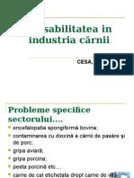 268942778 Curs 7 Trasabilitatea in Industria c Rnii Ppt