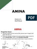 03- Amina