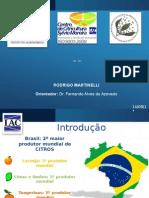 Apresentação Rodrigo Martinelli_completa