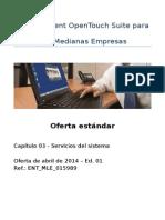 ES_2014-04_Std-Offer_ENT_MLE_015989__03_System-Services_ES_ed01.docx