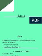 Água (1).ppt