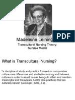transcultural_nursing_nur324.ppt