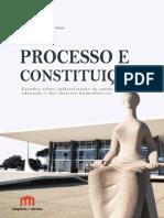 Processo e Constituição 2015
