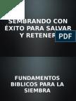 SEMBRANDO PARA SALVAR.ppt