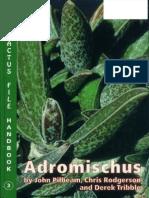 Adromischus