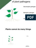 Types of Plant Pathogens