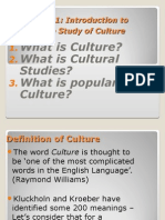 Introducing Culture Power Point Presentation