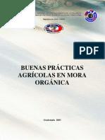 Buenas Practic as Mora Organic A
