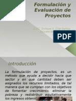1 Formulación y Evaluación de Proyectos
