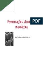 fermentacoes_2009.pdf