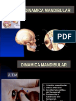 dinamicamandibular-.ppt