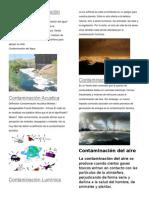 Tipos de Contaminación Del Medio Ambiente 21 09 2015