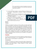 4.Generos literarios.docx