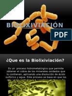 Biolixiviación en mineria