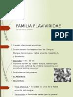 Familia Flaviviridae