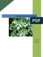 TODO SOBRE LA ORTIGA.pdf