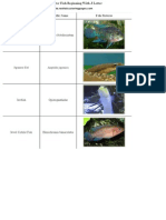 List of Freshwater Fish Beginning With J