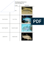 List of Freshwater Fish Beginning With Q