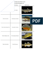 List of Freshwater Fish Beginning With Y