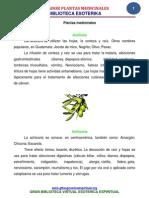 ECUADOR PLANTAS MEDICINALES