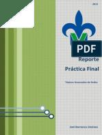 Practica Final Topicos de Redes