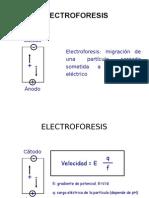 4 TBBM Electroforesis 11-12