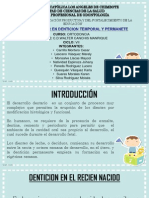 Ortodoncia Desarrollo de los Maxilares