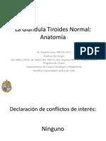 Anatomia Tiroides y  Cuello