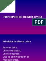 Principios de Clinica Ovina