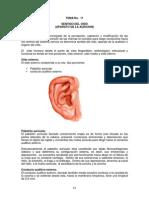TEMA 11 Anatomía Humana