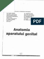 Genital Niculescu,Ciomu