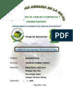 Comercializacion de La Piãa..1⺠Esquema