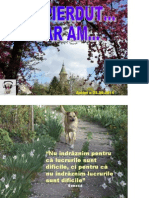 AM-PIERDUT.pdf