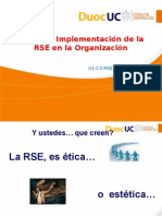 1 1 9 Areas de Implem de La RSE