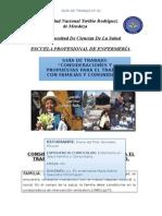 GUIA  COMUNITARIA.docx
