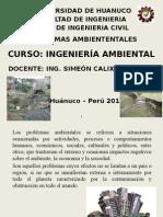 Problemas Ambientales 2015